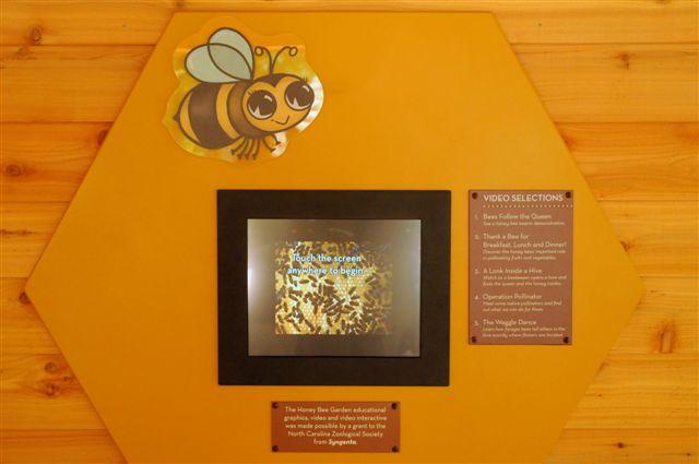 zoo-exhibit-049
